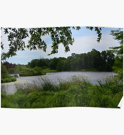Windy Day at Powell Gardens  Poster