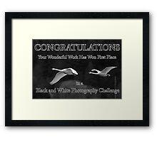 b&w challenge winner Framed Print