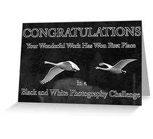 b&w challenge winner Greeting Card