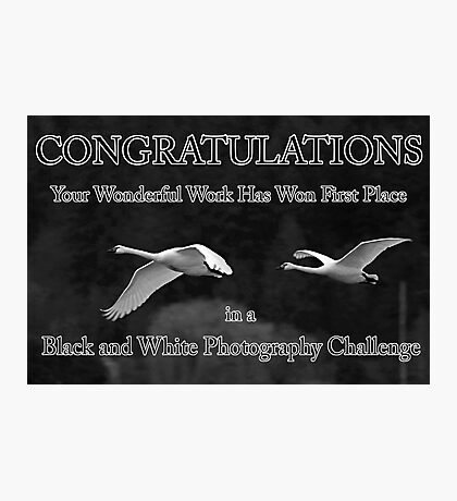 b&w challenge winner Photographic Print
