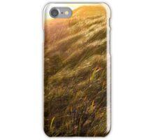 Sunset Warrnambool iPhone Case/Skin
