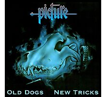 Picture Old Dogs New Tricks Photographic Print