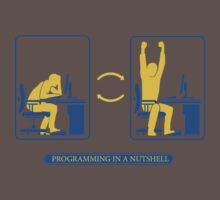 Programming in a nutshell by whitewust
