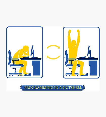 Programming in a nutshell Photographic Print