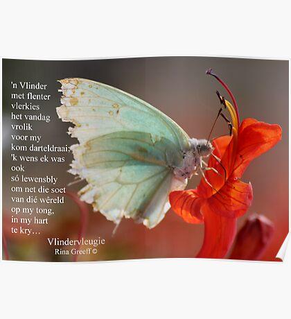 Vlindervleugie Poster