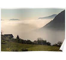 fog on lake Poster