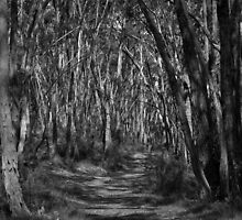 Scary Trees- The Ridge Trail by Ben Loveday