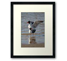 Sex on the Beach Framed Print