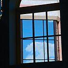 Windows by Lenore Senior