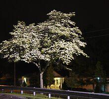 Night Tree 2 by JoeyAndArly