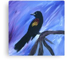 Red Winged Black Bird Canvas Print
