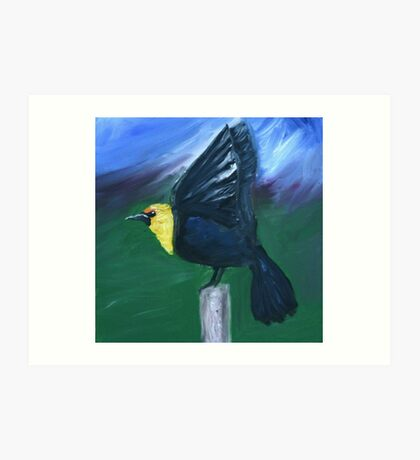 Yellow Headed Black Bird Art Print