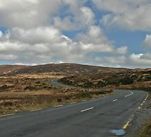 Road to Glenveagh national park by Martina Fagan