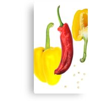 Yellow Pepper Red Pepper Canvas Print