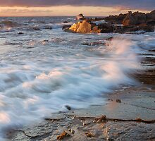 Golden Coast by Blackgull