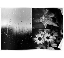 AFTER THE RAIN (TRIPTYCH) Poster