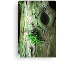 The Tree Lives Canvas Print