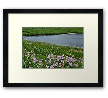 Windy Day on the Prairie Framed Print