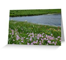 Windy Day on the Prairie Greeting Card