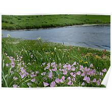 Windy Day on the Prairie Poster