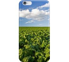 Green and Blue iPhone Case/Skin