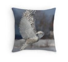 Snowy Owl II Throw Pillow