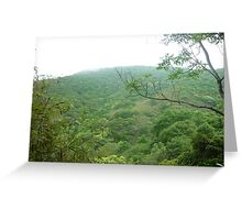 tranquill jungle trees climbing up green mountain with white clouds drifting past Greeting Card