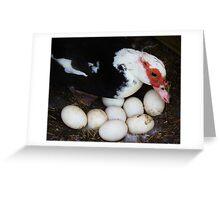 Tending the Eggs Greeting Card