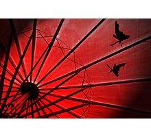 Red Umbrella Photographic Print