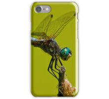 Blue Dasher Dragonfly iPhone Case/Skin