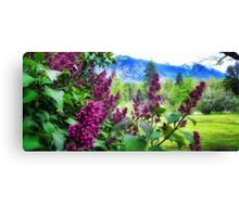 Lilac Dreams Canvas Print
