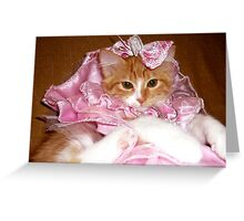 Pretty Princess Kitten Greeting Card