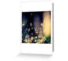 When Fairies  dance. Greeting Card