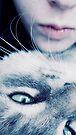 Meow by schizomania