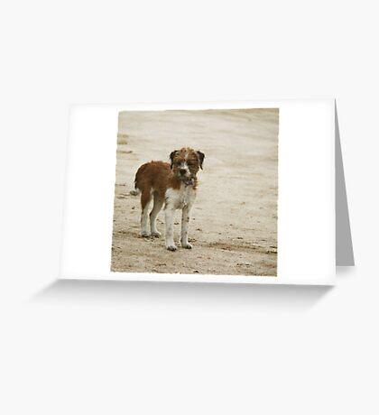 _cierta idea de la indefensión [toda una historia...] Greeting Card