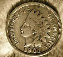 Lucky 1901 Indian Head Pennie. by LJ_©BlaKbird Photography