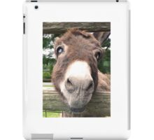 Close Up Cute Donkey Face iPad Case/Skin