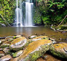 Beauchamp Falls, Otway N.P by Jason Asher