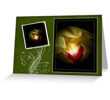 Green Orchid Card Greeting Card