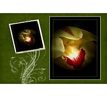 Green Orchid Card Photographic Print