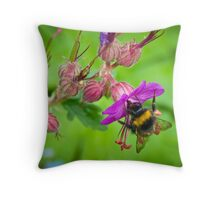 A sip of springtime Throw Pillow
