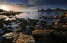 Rocky Cape Sunshine by Robert Mullner