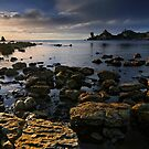 Rocky Cape Sunshine by Robert Mullner