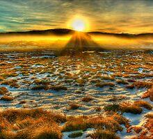 Autumn snow, Bogong High Plains by Kevin McGennan