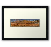 Last Days Of Autumn - Somewhere near Oberon NSW Australia - The HDR Experience Framed Print