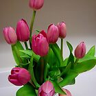 Mother's Day Tulips by Tricia Stucenski