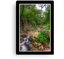 On the way to Simpson's Falls Canvas Print
