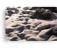 The Beautiful Cover of Snow Canvas Print