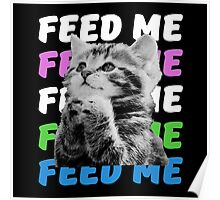 Feed me kitten very hungry asking for food Poster