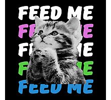 Feed me kitten very hungry asking for food Photographic Print